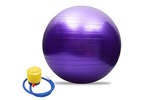 PERPETUAL Pelota Pilates Balón Embarazo Suiza Ejercicio Fitness Grande 65 cm Fitball con Inflador AntiExplosión Yoga Tonificación Ejercicios Gimnasia Casa Mujer Embarazada Trabajar Silla Oficina